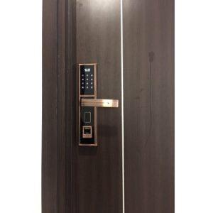 Hình ảnh khóa vân tay kv 6050
